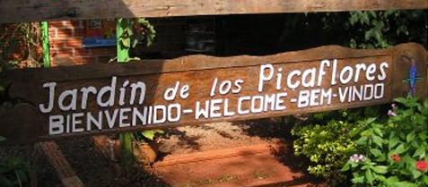 picaflores iguazu
